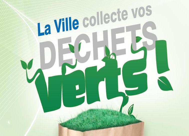 collecte des d chets verts europe ecologie les verts de fontenay sous bois 94120. Black Bedroom Furniture Sets. Home Design Ideas